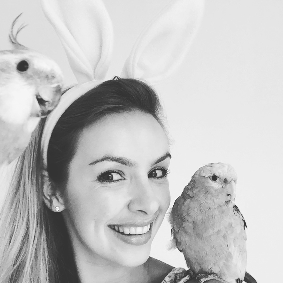 Easter birdies - Katie Rebekah